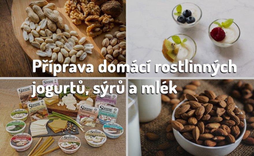 Domácí mléka, sýry, jogurty z ořechů, semínek a obilovin
