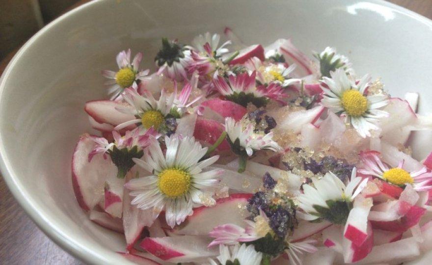 jarní květinový salát