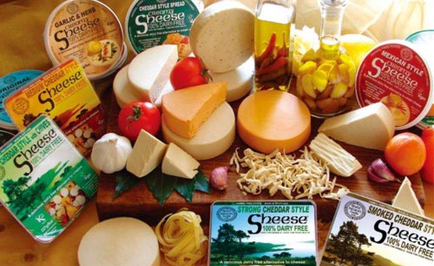 rostlinné sýry