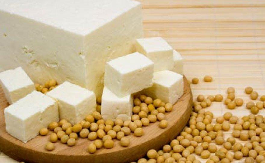 Tofu na divoko