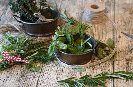 Kuchyňské bylinky