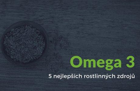 Lněné semínko - omega 3