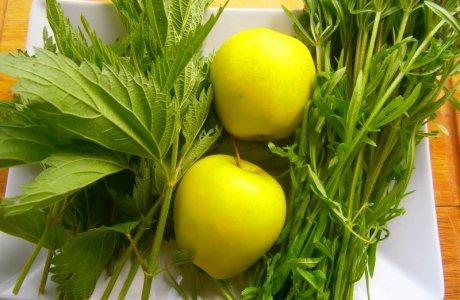 Green smoothie z domácích luhů a hájů